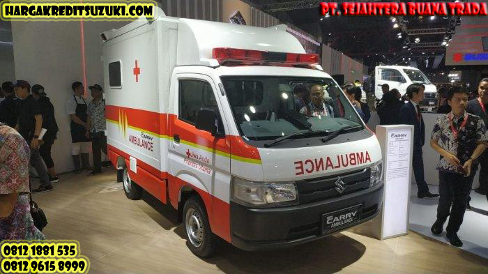 ambulance carry pick up